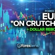 """Euro """"On Crutches"""" and Dollar Rebounds"""